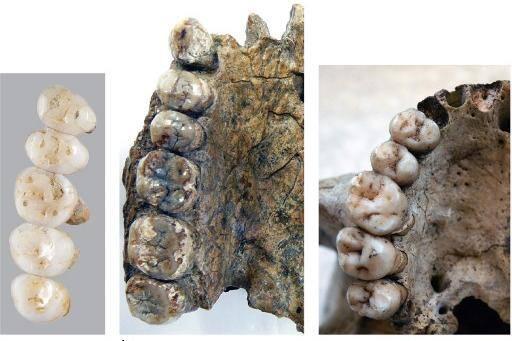 Nova espécie humana foi descoberta nas Filipinas
