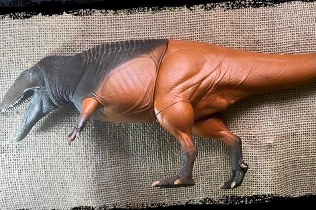 Cientistas Produzem Bonecos Reais De Dinossauros Brasileiros O