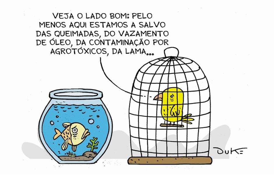 Charge - Desastres ambientais