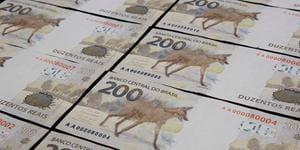 Lobo-guará empaca e só 12,7% das cédulas de R$ 200 previstas estão em circulação