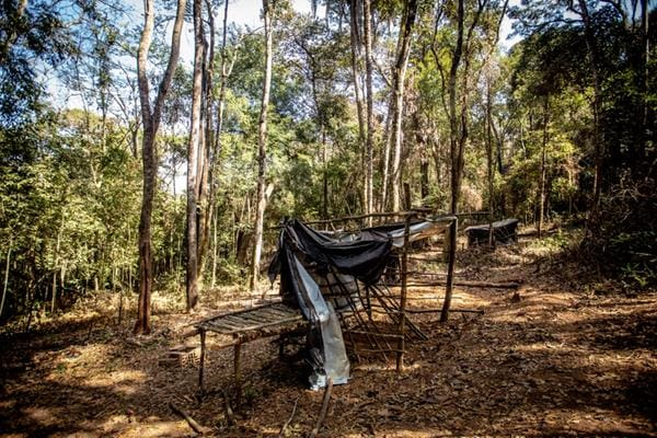 Queimadas ilegais de vegetações nativas e raras da Mata Atlântica, como a Copaíba e o Jacarandá, são realizadas na área da aldeia
