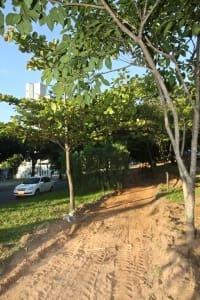Cidades - Do dia - Belo Horizonte MG Obras de implementacao de ciclovia na avenida Jose Candido da Silveira ja comecaram  FOTO: MARIELA GUIMARAES / O TEMPO 15.5.2014